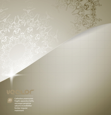 Elegant background with lace ornament and place for text  Vector