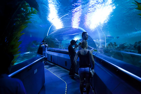 aquaria: KUALA LUMPUR, JULY 5: A group of tourists visiting the aquarium in Kuala Lumpur, Malaysia on July 5, 2014. Editorial