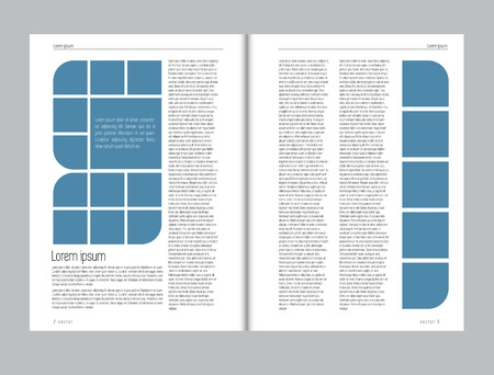 page views: Magazine layout vector Stock Photo