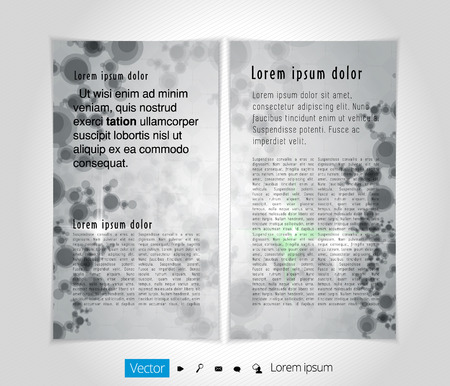 the layout: Magazine layout, vector