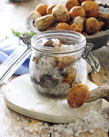Fresh forest mushrooms preserved in sea salt