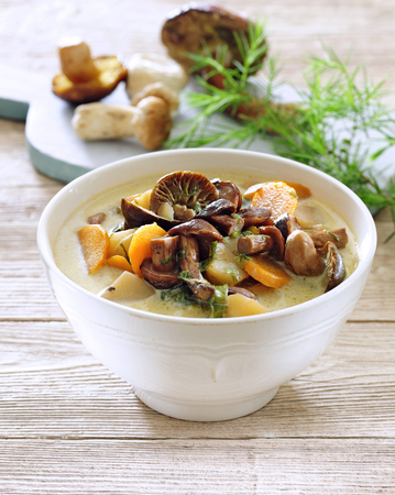 Thick and chunky soup with fresh wild mushrooms and vegetable. 写真素材