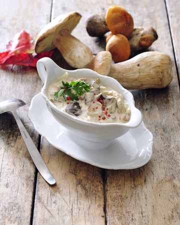 Fresh porcini mushroom sauce with sour cream. 스톡 콘텐츠