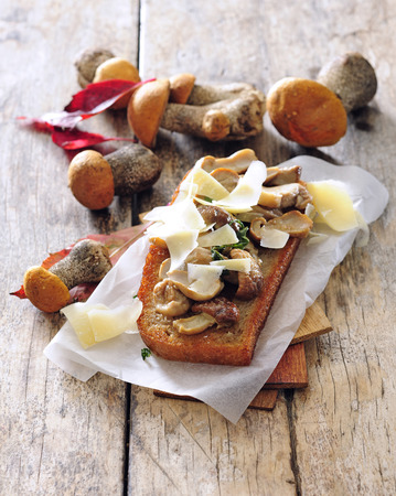 Pan fried toast bread sandwich with wild mushroom and parmesan cheese.
