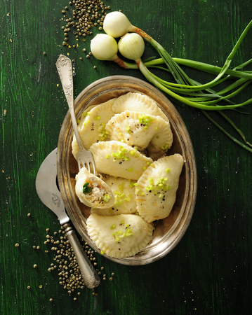 Boiled dumplings with green onion and breast chicken filling. 写真素材 - 103282349