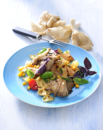 Farfalle pasta with oyster mushroom and turkey breast. 스톡 콘텐츠