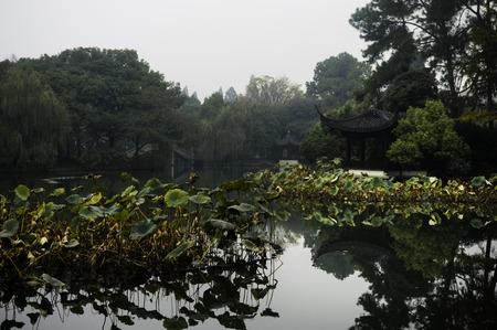 reflection water: Acqua di riflessione