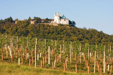 View on the Leopoldsberg Church from a Viennese wine yard, Vienna, Austria