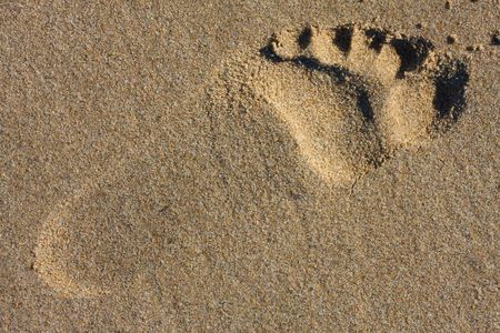 foot step: Passaggio a piedi nella sabbia Archivio Fotografico