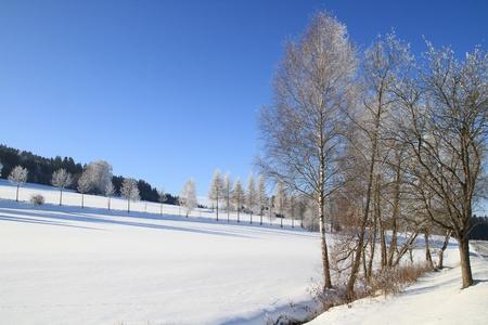 White Snow Field Winter Wonderland Stock Photo - 9455381