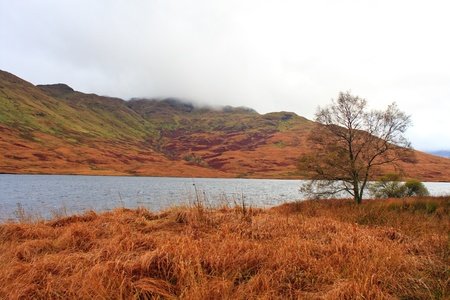 scotish: Scotish Highland Landscape