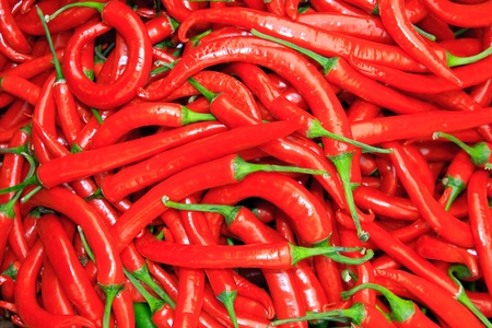 red chilli pepper plant: Basket of hot chilies