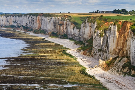 steep cliff: Cliffs near Etretat and Fecamp, Normandy, France Stock Photo