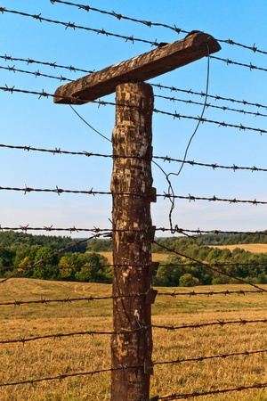barbed hook wires: Remains of iron curtain near border of Czech republic and Austria. Iron curtain divided Europe in years 1948-1989.