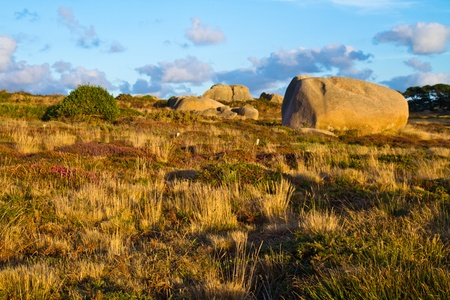 kalahari: Beautiful landscape with granite boulders, Brittany, France Stock Photo