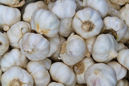 Close up of garlic on market stand photo