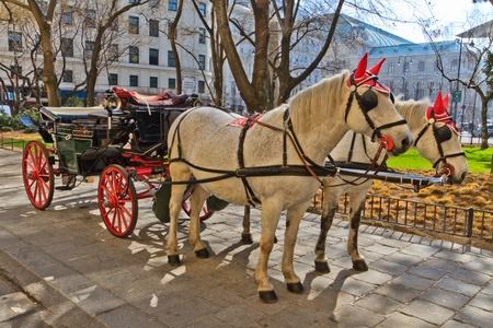 horse cart: Fiaker horse carriage in Vienna, Austria (no people) Editorial
