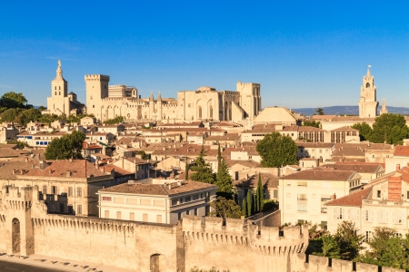 avignon: Avignon in Provence, View on city and Popes Palace