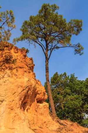 roussillon: Red Cliffs in Roussillon (Les Ocres), Provence, France