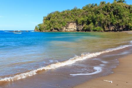 grenadines: Beautiful Caribbean Beach with palm coastline