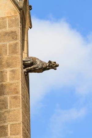 gargoyle: Gargoyle  gothic church architectural detail