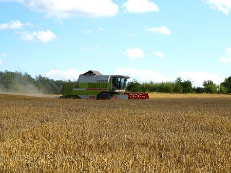 Harvester on wheat field Stock Photo - 3438051
