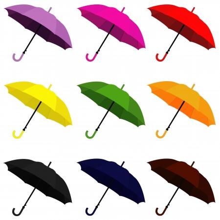brows: umbrella Illustration