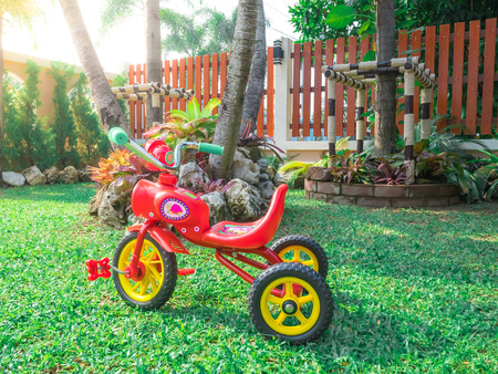 red bike tricycle in the beautiful garden park playground at home flare light green grass.