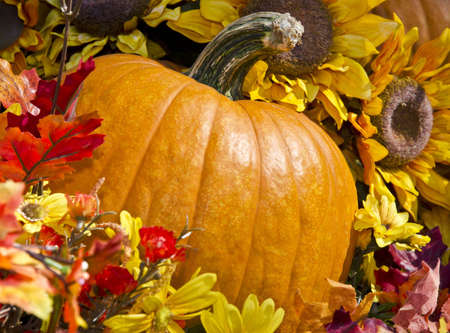 Pumpkin and flowers representing fall photo