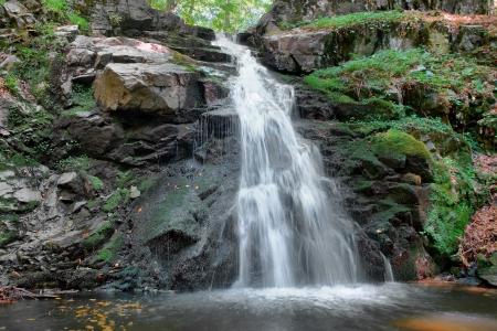 滝の森の長時間露光の背景に