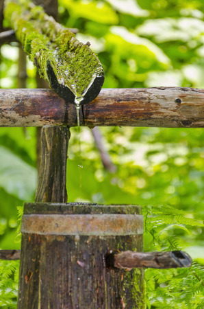 Water running out of outdoor faucet, natural ecology drink water from forest spring source photo