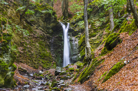 clean environment: Famous Waterfall in Spring Pehcevo, Macedonia hidden in deep in ecology clean environment forest, Macedonia Stock Photo