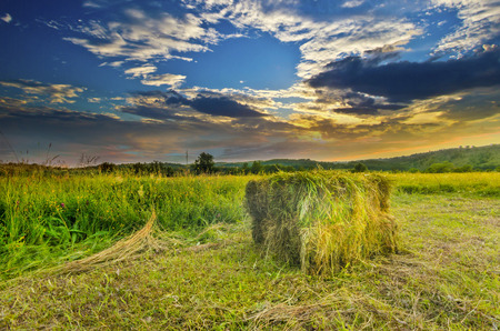 A farm field in the countryside filled with straw bales on dramatic colorful sunset sky photo