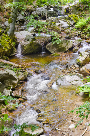 clean environment: fall forest stream of ecology clean environment, Macedonia Stock Photo