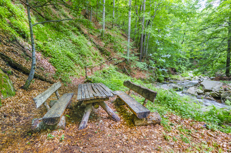 bench in the autumn park, Empty picnic table