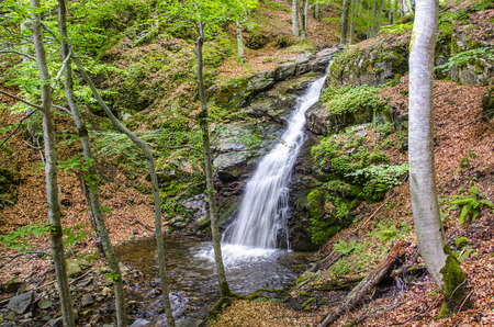 clean environment: waterfall in macdonia national park. In the deep forest on ecological clean environment mountain.