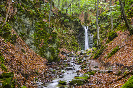 clean environment: Famous waterfall in macedonia ecological clean environment deep in the forest.