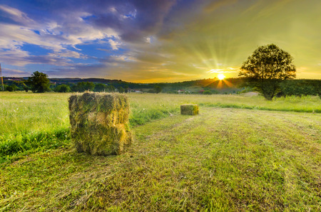 A farm field in the countryside filled with straw bales on dramatic colorful sunset sky and sunrays Фото со стока