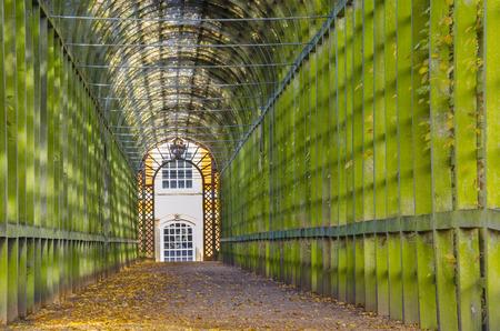 a garden tunnel in London, England photo
