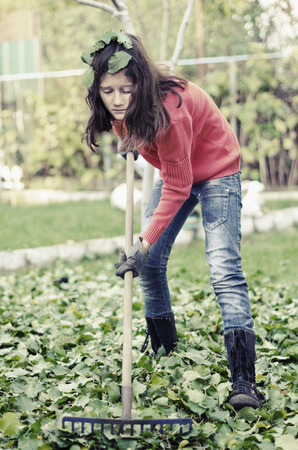 garden green: Young girl with a rake tool cleaning garden green leafs