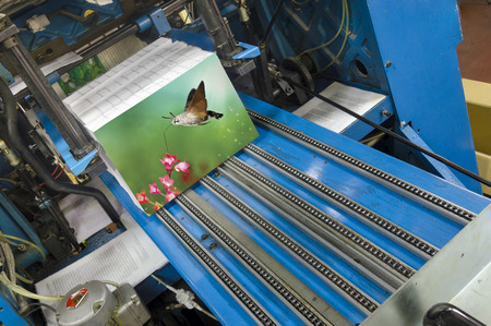 printing inks: Book production line in modern print house wide shot Stock Photo