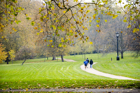 LONDON - circa OCT, 2013: Hyde Park a favorite vacation spot visitors and Londoners in London. Hyde Park (142 hectares) - one of largest parks in central London and one of Royal Parks of London Editorial