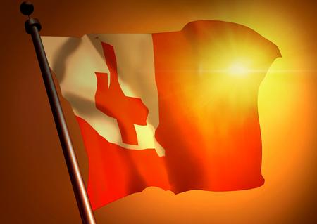 winner waving Tonga flag against the sunset