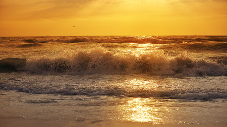 Storm waves splash sea at sunset