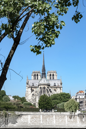 Notre Dame de Paris cathedral with the Seine River in Spring, Paris, France, vertical Stock Photo