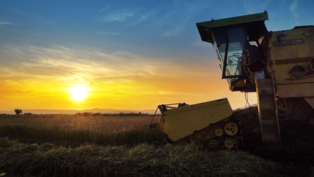 Combine, field and sunrise. Reach success in agribusiness 版權商用圖片