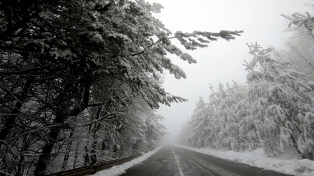 Winter drive pov on snow blizzard with poor visibility on the mountain rural road