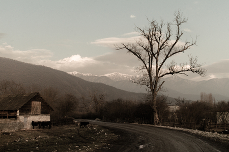 mountaintop: Landscape of asphalt road going off into the mountain passes through the trees, villages and forest places. or rural places of Azerbaijan at sunset Stock Photo