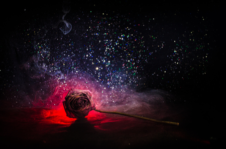 A wilting rose signifies lost love, divorce, or a bad relationship, dead rose on dark background with smoke Stock Photo