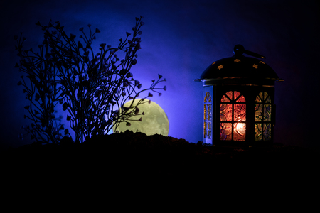 Valentine`s day decor concept. Romantic scene. Big Lantern as lovers house with rising moon on night decor background